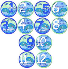 amazon com baby whales baby month onesie stickers baby shower