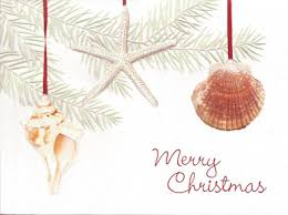 christmas cards themed tropical theme christmas cards oceanstyles