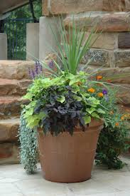 garden beautiful container gardens container garden ideas uk