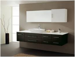 Cool 20 Double Vanity Bathroom Houzz Decorating Inspiration Of