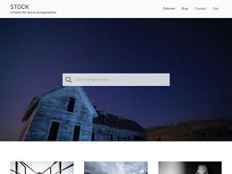 wordpress themes for photographers artists and businesses