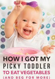 best 25 foods for picky toddlers ideas on food for
