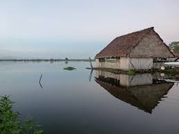 Global Houses Floating Houses Iquitos Amazon River Peru Global Water Forum