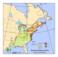 map of eastern usa and canada current importance value and s range maps