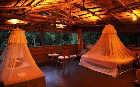 7 best tree houses in india tree house resorts in india tripoto