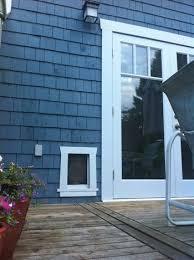doggie door in glass door best 25 patio dog door ideas on pinterest pet door door with