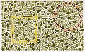 Color Blind Plate Test Color Vision Test