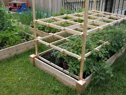 raised bed vegetable garden plans weed picture landscaping