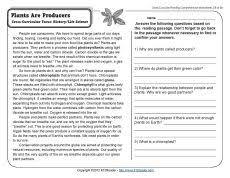 world climates reading comprehension worksheets comprehension
