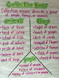 the 25 best collective nouns worksheet ideas on pinterest