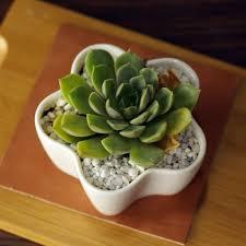popular wholesale ceramic pots buy cheap wholesale ceramic pots