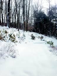 photo wilton snowfall