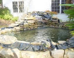 aquascape pond fish pond installation admirable swimming ponds