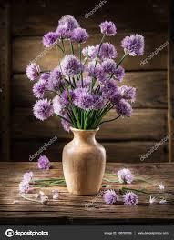 erba cipollina in vaso bouquet di fiori di cipolla erba cipollina nel vaso sul legno