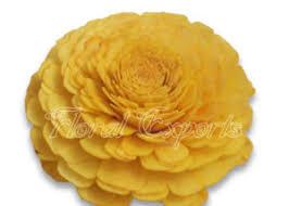 sola flowers sola wood flowers i sola flowers i manufacturer i wholesaler