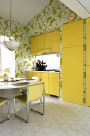 Yellow Kitchen Cabinet Kitchen Cabinets Tags Top Ideas Of Shaker Style Kitchen For