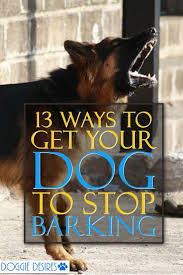 how to get dog to stop barking 162 best pet facts pet hacks tips and tricks for pet care images