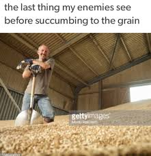 F Memes - insider tip dont call the f meme a grain elevator death memes