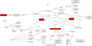 Map Nwea Test Group 1 Concept Map