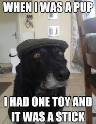 Cap Memes - more dog memes album on imgur