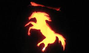 carve a horse jack u0027o lantern horse lover u0027s math