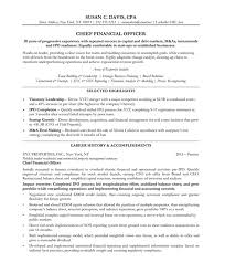 Vp Finance Resume Examples by Cfo Resume Examples Chief Financial Officer Resume Sample Chief