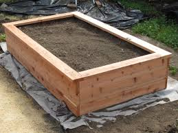 Large Planter Box by Building A Planter Box And Planting Fruits And Veggies Garden