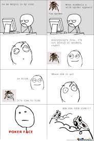 Afraid Of Spiders Meme - funny meme not afraid of spiders meme best of the funny meme