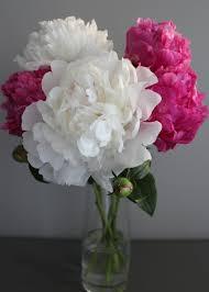 Peonies Season Floral Adventures U2014 Therese Lopez Florals