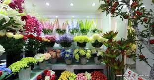 Artificial Flowers Wholesale Artificial Flower Showrooms Yiwu China 7