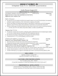 Sample Nursing Resume Objective resumes nursing students resume objective examples nursing free