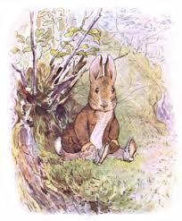 rabbit and benjamin bunny the tale of benjamin bunny literawiki fandom powered by wikia