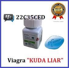 jual obat kuat pria perkasa tahan lama viagra usa original cap