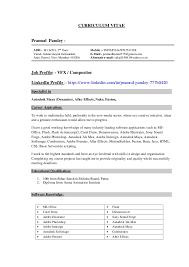Artist Resume Examples by Fx Artist Resume Format Contegri Com