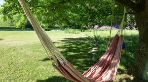 backyard hammock fresh free flower relax backyard garden leisure