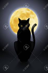 black cat sitting on a background of the moon royalty free