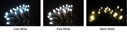difference between cool white warm white and white lights