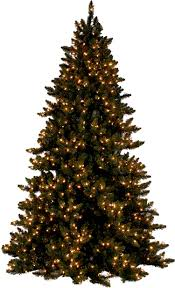 White Christmas Tree With Black Decorations Hope Christmas Trees