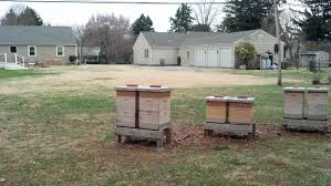 chester county honey