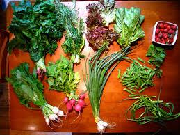 farm fresh food wallpaper