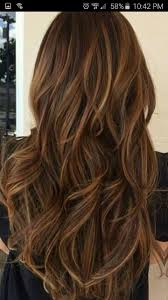 high and low highlights for hair pictures pin by diana aquino on hairstyle colors pinterest hair