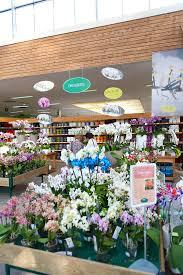57 best il mondo viridea images on pinterest flower shops