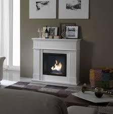 new freestanding bio ethanol fireplace home design furniture