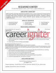 resume format for customer service executive customer service sample resume u2013 inssite