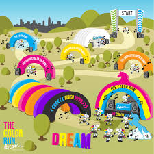 about the color run canada