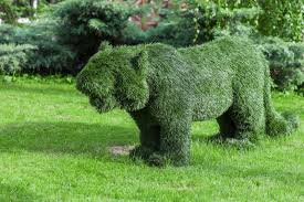 Elephant Topiary A Landscaping Professional Gives Tips For Picking The Right Topiary