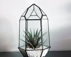 small geometric terrarium air plant glass terrarium glass