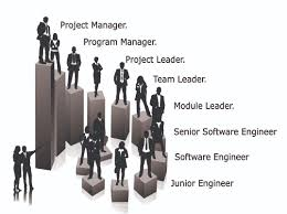 software engineer kaise bante hai and uske government and private