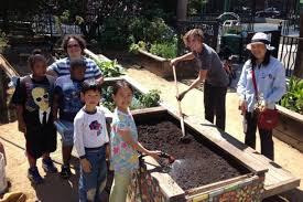 Urban Gardens San Francisco - san francisco u0027s groundbreaking urban agriculture program turns one