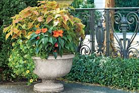 Fall Garden Plants Texas - container gardening southern living